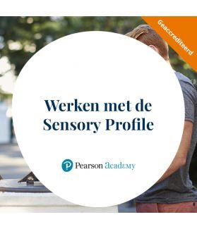 Werken met de Sensory Profile-NL